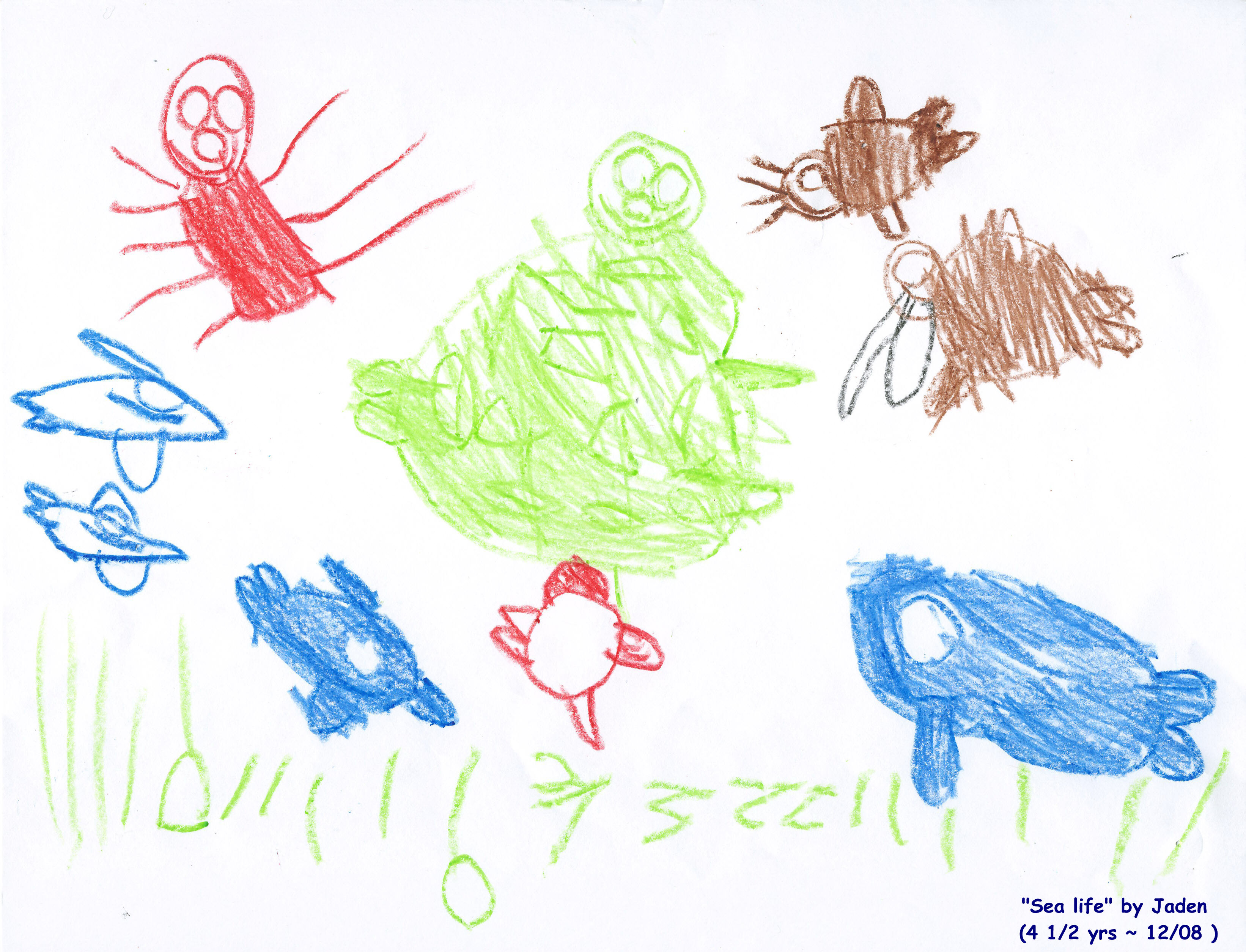 a picture of sea life drawn by jaden a five year old fan of birdsong - Kids Drawings